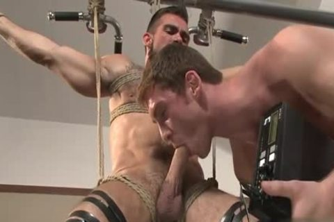 large schlong gay tied With Facial